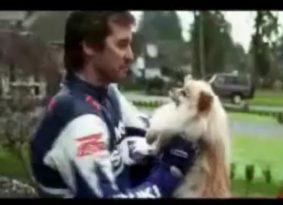 וידאו: ככה מוציאים את הכלב לטיול