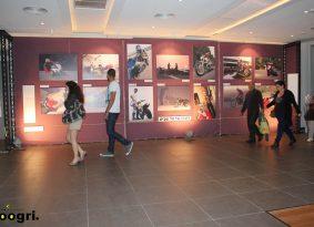 טל מטייל בתערוכה