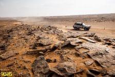 223 Garcia Merino Alberto (esp), Garcia Merino Julian (esp), Toyota, Merinoteam, Dakar Classic, action during the 7th stage of the Dakar 2021 between Ha'il and Sakaka, in Saudi Arabia on January 10, 2021 - Photo Gustavo Epifanio / Fotop
